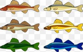 Cape Boa Lake Wildlife - Lake Illustration PNG