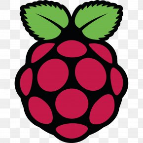Computer - Raspberry Pi Foundation Computer USB Linux PNG