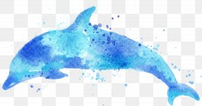 Dolphin Drawing Watercolor - Watercolor Painting Drawing Dolphin Illustration PNG