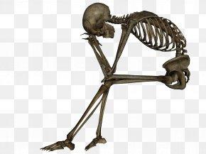 Skeleton Image - Skeleton In A Dead Space Dead Skeletons Dead Magick Dead Comet PNG