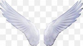 Wings - Angel Sticker Clip Art PNG
