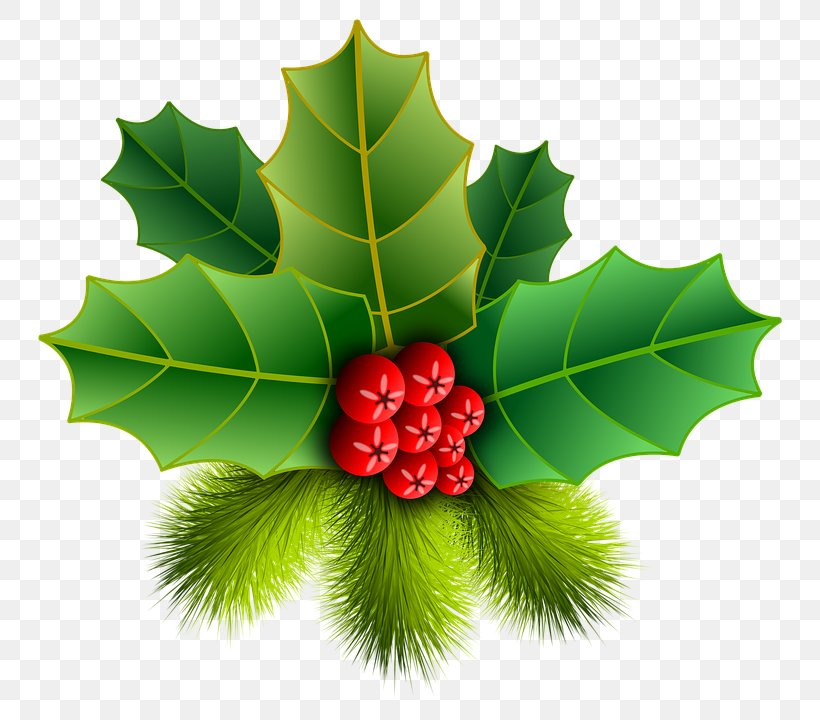 Christmas Ornament Common Holly Clip Art, PNG, 792x720px, Christmas, American Holly, Aquifoliaceae, Aquifoliales, Christmas Decoration Download Free