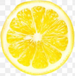 Lemon Slices Transparent Clip Art - Lemon Juice Grapefruit Citron Citrus Junos PNG