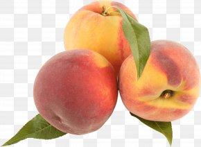 Peach Image - Peach Rosé Color Glass PNG