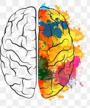 Painted The Brain - Brain Euclidean Vector Icon PNG