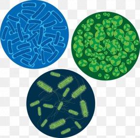FIG Bacteria - Bacteria Microscope Virus Cell Euclidean Vector PNG