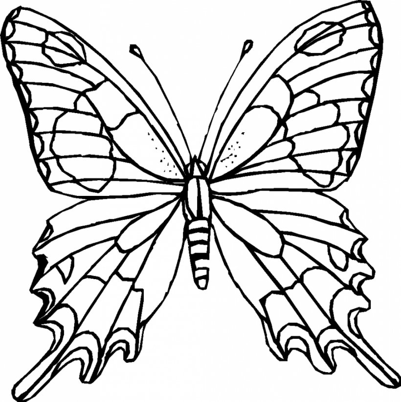 Monarch Butterfly Outline Coloring Book Clip Art, PNG, 940x942px,  Butterfly, Adult, Animal, Black And White, Book