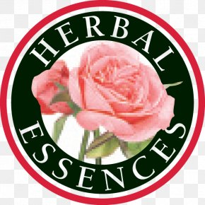 Herbal - Herbal Essences Logo Hair Conditioner Shampoo Personal Care PNG