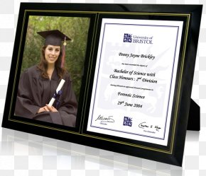 GRADUATION BORDER - Picture Frames Diploma Graduation Ceremony Academic Certificate PNG