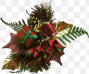 Christmas Decoration Fir - Christmas Ornament PNG