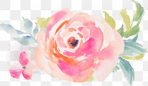 Watercolor Rose - Watercolor Painting Flower Royalty-free PNG