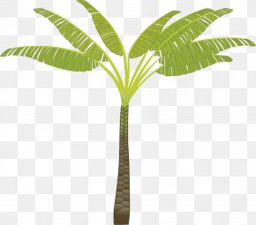 Palm Tree - Arecaceae Tree Clip Art PNG
