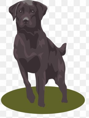 Free Panther Clipart - Labrador Retriever Golden Retriever Puppy Clip Art PNG