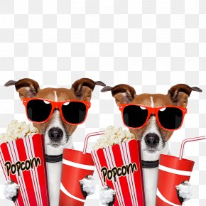 Take Two Dog Popcorn - Film Outdoor Cinema Clip Art PNG