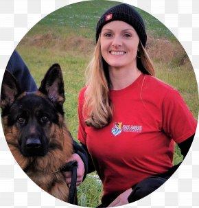German Shepherd - German Shepherd Australian Kelpie Obedience Training Obedience Trial Dog Breed PNG