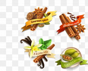 Vector Spices - Spice Food Ingredient Star Anise PNG