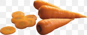 Carrot Image - Carrot Clip Art PNG