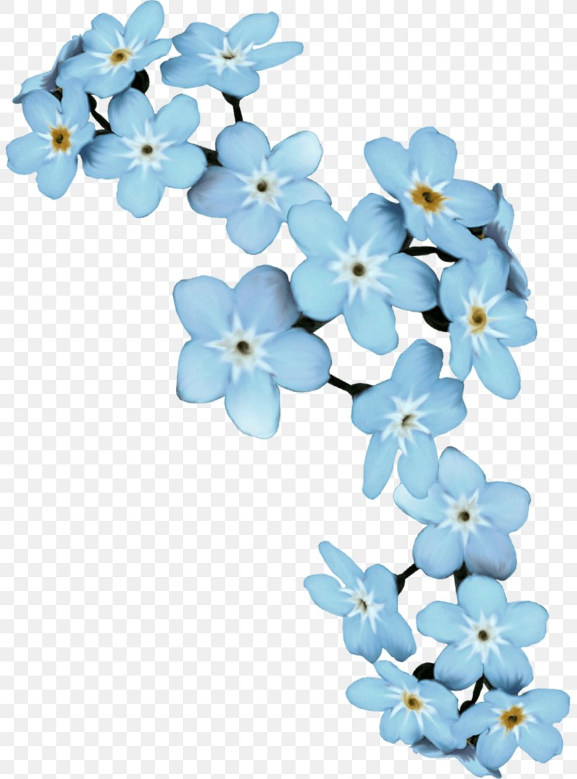 Flower Scorpion Grasses Clip Art Borders And Frames Floral Design, PNG, 803x1107px, Flower, Alpine Forgetmenot, Artificial Flower, Blossom, Blue Download Free