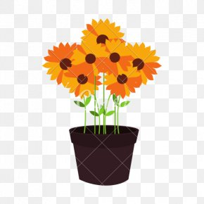Flower Pot - Flowerpot Common Sunflower Graphic Design PNG