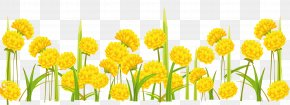 Dandelion - Paper Clip Art PNG