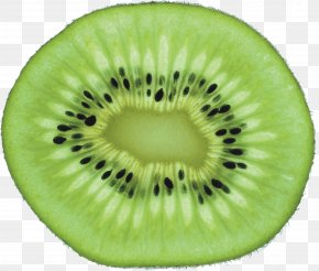 Green Cutted Kiwi Png Image - Papua New Guinea Southern Brown Kiwi New Zealand Women's National Rugby League Team Max Kiwi Souvenirs PNG