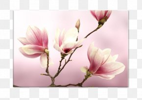 Painting - Paper Painting Flower Stock Photography Royalty-free PNG