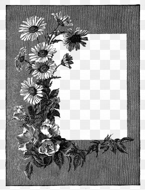Gray Flower Frame Photos - Picture Frame Clip Art PNG