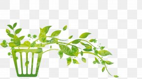 Abatement Illustration - Leaf Greens Plant Stem Herb Font PNG