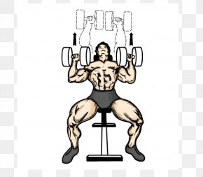 Remarkable Cartoon Dumbbell Images Cartoon Dumbbell Png Free Download Gmtry Best Dining Table And Chair Ideas Images Gmtryco