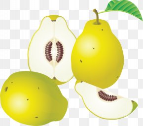Pear Image - Fruit Pear Watermelon Clip Art PNG