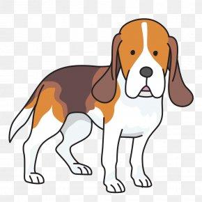 Fancy Dog - Beagle Puppy Basset Hound Foxhound Clip Art PNG
