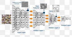 Deep Neural Network Backpropagation - Deep Learning Machine Learning Artificial Neural Network Artificial Intelligence Algorithm PNG