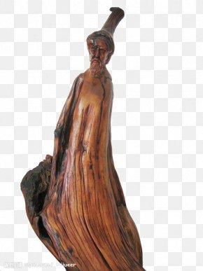 Ancient Root Elderly - Work Of Art Gratis PNG