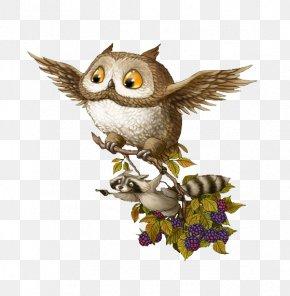 Cartoon Owl Cartoon Civet Cats - Baby Owls Raccoon Bird Barn Owl PNG