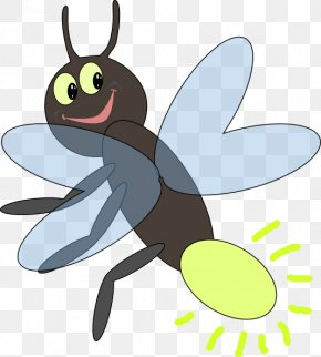 Firefly Cliparts - Firefly Light Insect Clip Art PNG