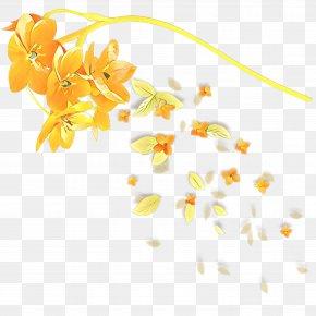 Plant Flower - Floral Flower Background PNG