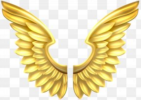 Gold - Gold Royalty-free Stock Photography Clip Art PNG