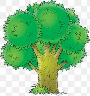 Dandelion - Drawing Tree Coloring Book Clip Art PNG