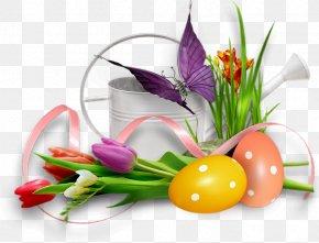PASQUA - Easter Image Hosting Service PNG