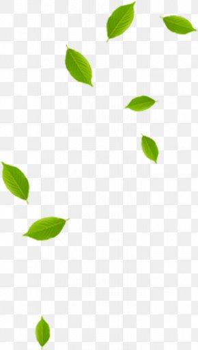 Leaf - Leaf Green Pattern PNG