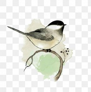 Birds - Watercolor Painting Bird Art Drawing PNG