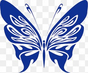 Blue Butterfly - Free Content Stock Photography Clip Art PNG