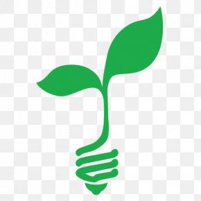 Symbol Plant Stem - Green Leaf Logo PNG
