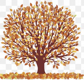 Autumn Tree With Falling Leaves Transparent Picture - Autumn Tree Clip Art PNG