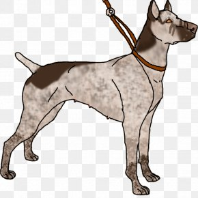 Rng - Great Dane Dog Breed Leash Non-sporting Group Clip Art PNG