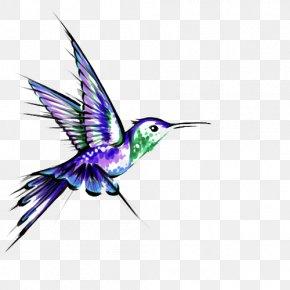 Hummingbird Tattoos Transparent - Hummingbird Tattoo Black-and-gray PNG