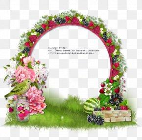 Design - Floral Design Picture Frames Flowering Plant Pink M PNG