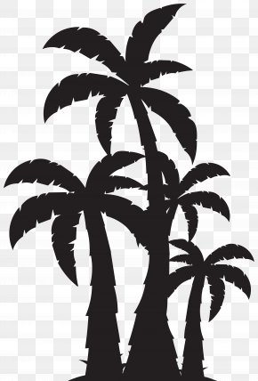 Palm Trees Silhouette Clip Art Image - Arecaceae Tree Clip Art PNG