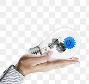 Holding A Light Bulb Creative - Alkapuri A Digital Guru Web Development Dhruv NetSol Pvt. Ltd. Business PNG