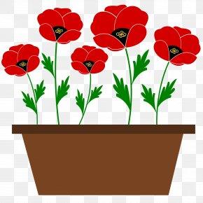 Pot Plant - Flowerpot Plant Drawing Clip Art PNG